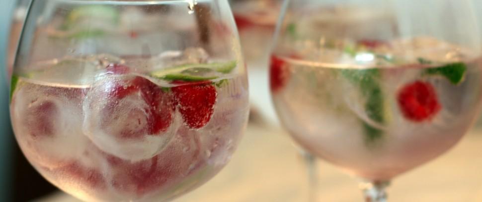 Gin Tonics-Route: Waar is dit goddelijke drankje het lekkerst?